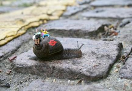 snail2 433x300 Inner City Snail   Slinkachu
