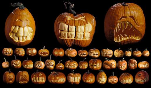 picture 21 513x300 Pumpkin Way