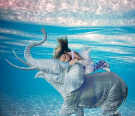 1 465x400 Underwater Fantasy