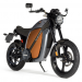 thumb 3164 374c0df20850ab5713483f2cfb3ce28e 75x75 Introducing the BRAMMO Enertia Electric Motorcycle