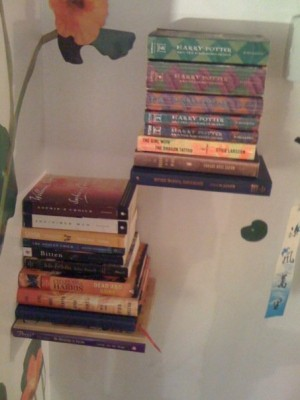 And The Extra Book Shelf Is A Flybrary From Organize It