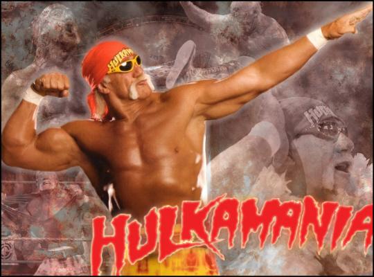 hulkhogan34ln Hulkamania 2009!