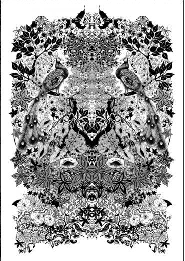 Detailed Art   Johanna Basford